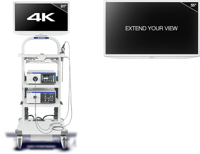 Olympus 4k Laparoscopic Tower Proton Sa